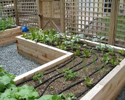 Small Picture Unique Long Raised Garden Beds How To Build Raised Garden Bed Best
