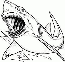 Small Picture Great White Shark Coloring Pages Within Page glumme