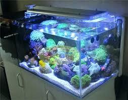 r aquarium lighting r aquarium lighting guide r aquarium lighting led light reef aquarium led reef aquarium lighting reviews