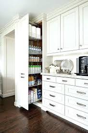 shallow pantry kitchen pantry cabinet design ideas impressive shallow floor cabinet best kitchen pantry cabinets ideas