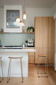 Interior Of A Kitchen 1000 Ideas About Mid Century Kitchens On Pinterest Modern
