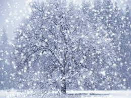 Animated Snow Scenes Animated Falling Snow Scenes Winter Screensaver With