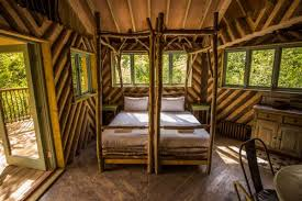 Luxury Family Treehouse With Hot Tub At DeerparkFamily Treehouse Holidays Uk