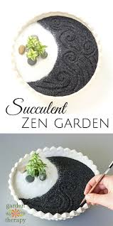 how to make a theutic succulent zen garden