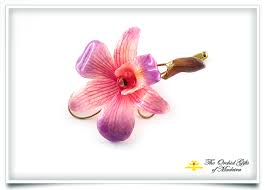 orchid brooch pin pink purple