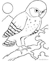 bird coloring pages bestofcoloring coloring pages printable bird coloring pages high resolution coloring printable on bird printable coloring sheet