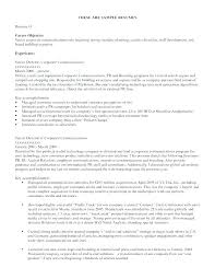 Resume Objective Section Sample Objective In Resume For Job Sample Job Objective For Resume Resume ...