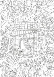 Small Picture 343 best animaux plumes images on Pinterest Coloring books