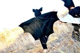 austin bat costumes