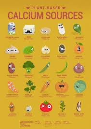 Vegan Calcium Poster English Cute Characters Show You