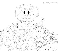 Amusing Caterpillar Coloring Page Very Hungry Caterpillar Coloring