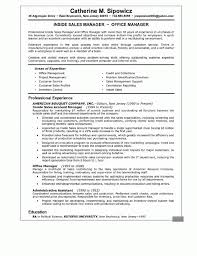 Resumes Writing Resume Summaryample Of Professional For Career