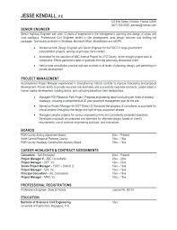 Sample Professional Resume Format Impressive Format For Professional Resume Examples Of Professional Resume