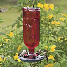 red glass bottle hummingbird feeder 3090r 300