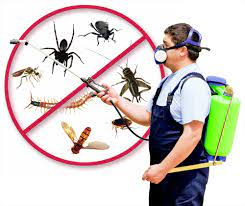 Chico Pest Control Pros - Learning About Aircrafts