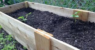 diy garden beds build raised garden bed on legs