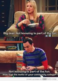 Big Bang Theory Quotes Adorable Quote Of The Big Bang Theory QuoteSaga