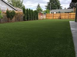 artificial turf yard. Wonderful Yard In Artificial Turf Yard S