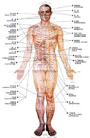 Pressure Point Charts Free 30 You Will Love Acupressure Body Chart