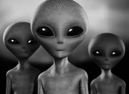 宇宙人の画像 原寸画像検索