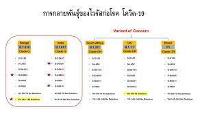 หมอยง ชี้โควิดสายพันธุ์อินเดียติดเชื้อง่าย-เบงกอลหลบวัคซีนได้  แต่ยังไม่พบระบาดในไทย