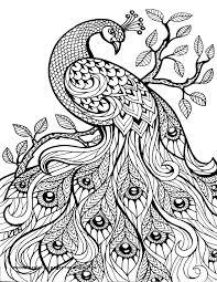 Animal Mandala Coloring Pages Lovely Animal Mandala Coloring Pages