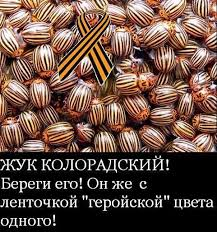 Элита Донбасса готова впустить оккупантов, чтобы и дальше эксплуатировать народ, - Сенченко - Цензор.НЕТ 9266
