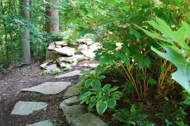 Small Picture Woodland garden design