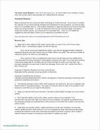 Real Estate Broker Job Description 42 Realtor Resume Sample Gfx