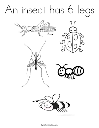 Small Picture An insect has 6 legs Coloring Page Twisty Noodle