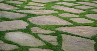 patio pavers with grass in between. Plain With Flagstone With Grass Between Stones  Google Search Paver Walkway  Flagstone Patio Grass Pavers Intended Patio With In Between