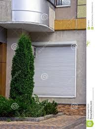 Grüner Thuja Und Anlagen Auf Dem Blumenbeet Vor Der Wand Des Hauses