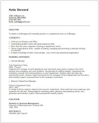 Gallery Of Retail Store Manager Resume Examples Store Sales Manager