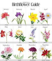 Month Flowers Chart Birth Flowers Chart Birth Flower Tattoos Tattoos Flower