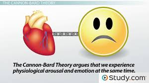 james lange cannon bard theories of emotion video lesson james lange cannon bard theories of emotion video lesson transcript com