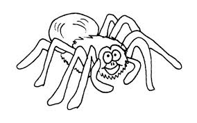 Small Picture Black widow spider coloring pages ColoringStar