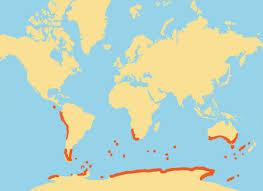 emperor penguin habitat map. Brilliant Map Map Intended Emperor Penguin Habitat Map