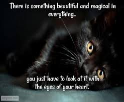 Beautiful Quotes That Touch The Heart Best of Magic Heart Touching Quotes Magic Quotes About Heart Touching