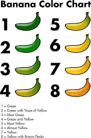Banana Color Chart Banana Color Chart By Jhnri4 Banana