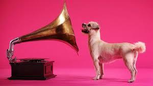 La première chanson de Noël pour chien désormais disponible