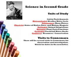 expert essay writers registration