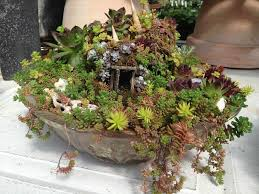 Small Picture The small world of fairy gardens HPPR