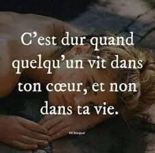 Testez Votre Pourcentage Damour Citation Damour Facebook