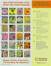 Menupause Blog Archive Bee Flowers Chart And Bee Action