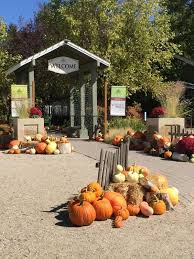 the idaho botanical garden hosts a variety of events among their most popular are the harvest festival and winter garden aglow icon events including bug