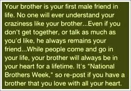 Quotes About Loving Your Brother Cool Best Quotes For Brother Love Together With I Love My Brother To Make