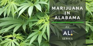 say no to marijuana legalization