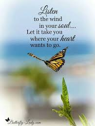 Butterfly Quotes Adorable Becoming The ButterflyThe Powerf Of Personal Transformation Www