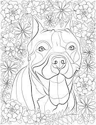 Pitbul Kleurplaat Bullterrier Gratis Malvorlage In Hunde Tiere