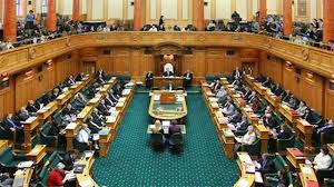 Image result for government nz